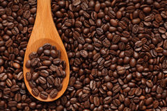Coffee beans in a wooden spoon Stock Photos