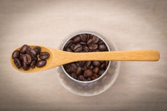 Coffee beans in wooden spoon. Close up of coffee beans in wooden spoon Royalty Free Stock Images
