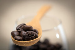 Coffee beans in wooden spoon. Close up of coffee beans in wooden spoon Stock Image