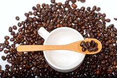 Coffee beans in wooden spoon on a coffee cup ,surrounding with coffee beans. On white background Stock Images