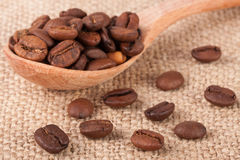 Coffee beans in a wooden spoon on sackcloth.  Stock Photo