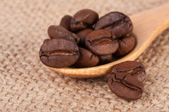 Coffee beans in a wooden spoon on sackcloth.  Royalty Free Stock Photography
