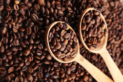 Coffee beans in wooden spoons Royalty Free Stock Image