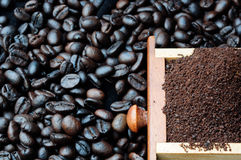 Coffee been. Come form coffeegrinder Royalty Free Stock Image