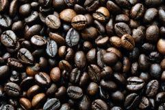 Coffee beens Stock Photos