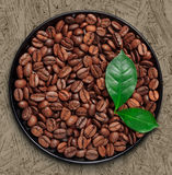 Coffee beens and leaves Stock Photo