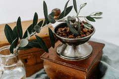 Coffee beens in old coffee mill. With olive branch Stock Photo