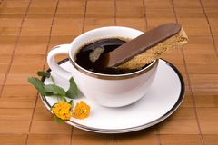 Coffee and Biscotti. On a brown background Stock Image