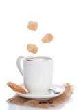 Coffee & Biscuit Stock Image