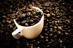 Coffee blend Royalty Free Stock Photography