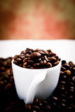 Coffee blend Royalty Free Stock Images