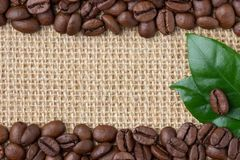 Coffee Border. Beans and leaf over burlap background. Top view with copy space royalty free stock photo