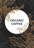 Coffee branch with leaves and coffee beans. Template. Vector Royalty Free Stock Images