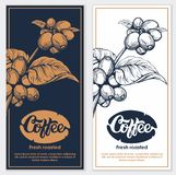 Coffee flyers. Coffee branch and logo engraving illustration vector illustration