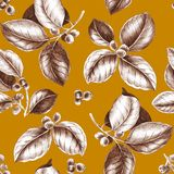 Coffee branches pattern. stock illustration