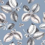 Coffee branches pattern. Coffee branches. Illustration of leaves and fruits of coffee in sketch style. Vintage modern pattern for carpet, rug, scarf, clipboard royalty free illustration