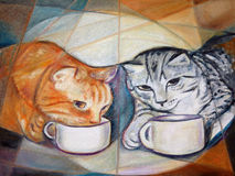 Coffee Break Cats Royalty Free Stock Photography