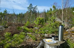 Coffee break in the forest. A bright day Royalty Free Stock Image