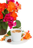 Cup of coffee with roses Stock Photo