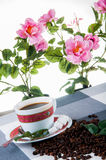 Coffee break time. Lovely home concept, coffee break Royalty Free Stock Image