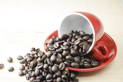 Coffee bean in red cup stock images