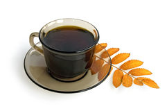 Coffee-brown cup with a mountain ash leaf Stock Photos