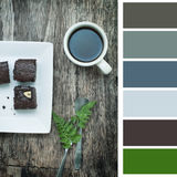 Coffee and brownie, color pallette Stock Image