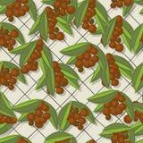 Coffee brunch pattern. Coffee branch sketch, seamless pattern design Royalty Free Stock Photo