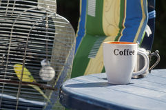 Coffee And Budgie Royalty Free Stock Images