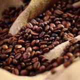Coffee on burlap background. Coffee on burlap texture background Stock Images