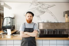 Coffee business owner concept - portrait of happy young bearded caucasian barista in apron with confident looking at. Camera in coffee shop counter stock photography