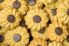 Coffee butter chocolate chip cookie Royalty Free Stock Image