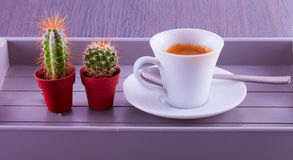 Coffee and cactus Royalty Free Stock Photo