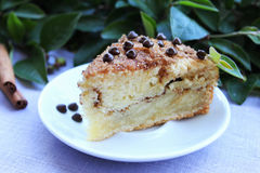 Coffee cake with cinnamon and chocolate chips Stock Photography