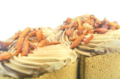 Coffee cake. Royalty Free Stock Photography