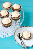 Coffee cakes with frosting Stock Photos