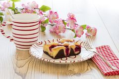 Coffee with cherry cake. And cherry blossoms Stock Images