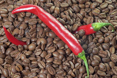 Coffee and Chili Stock Photography