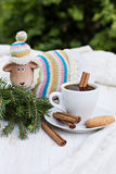 Coffee or chocolate with cinnamon and cookies Stock Photo
