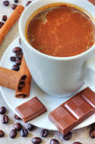 Coffee with chocolate and cinnamon Stock Images