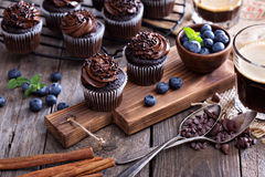 Coffee and chocolate cupcakes Royalty Free Stock Photo