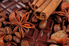 Coffee, chocolate, star anise, cinnamon sticks and hazelnuts Royalty Free Stock Photos