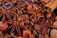 Coffee, chocolate, star anise, hazelnuts and cinnamon sticks clo Stock Photography