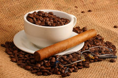 Coffee and cigar. Coffee beans in white cup with cuban cigar and glasses royalty free stock image