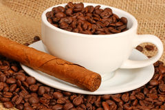 Coffee and cigar. Coffee beans in white cup with cuban cigar Royalty Free Stock Images