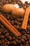 Coffee, cinamon and nut Stock Images