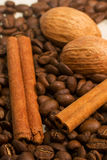 Coffee, cinamon and nut Stock Image