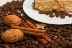 Coffee, cinamon, nut and plate with cake Stock Images