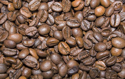 Coffee. Close up of piled coffee beans Royalty Free Stock Photo