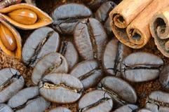 Coffee closeup. Ground coffee, coffee beans, cinnamon and star anise. Stock Photos